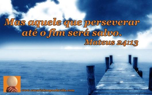 Mas aquele que perseverar até o fim será salvo. Mateus 24:13