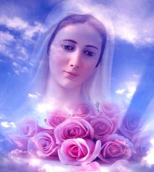 Segui-Me, filhos meus prediletos, com toda a confiança e não vos deixeis perturbar pelas dificuldades que deparais no caminho. Lindas rosas com nossa Senhora.