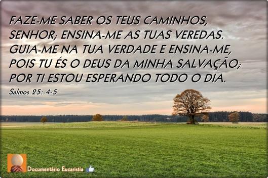 FAZE-ME SABER OS TEUS CAMINHOS, SENHOR; ENSINA-ME AS TUAS VEREDAS.  GUIA-ME NA TUA VERDADE E ENSINA-ME, POIS TU ÉS O DEUS DA MINHA SALVAÇÃO; POR TI ESTOU ESPERANDO TODO O DIA.  Salmos 25: 4-5 --- MUÉSTRAME, OH JEHOVÁ, TUS CAMINOS; ENSÉÑAME TUS SENDAS.   ENCAMÍNAME EN TU VERDAD, Y ENSÉÑAME; PORQUE TÚ ERES EL DIOS DE MI SALUD: EN TI HE ESPERADO TODO EL DÍA.  Salmos 25: 4-5 --- SHEW ME THY WAYS, O LORD; TEACH ME THY PATHS.  LEAD ME IN THY TRUTH, AND TEACH ME: FOR THOU ART THE GOD OF MY SALVATION; ON THEE DO I WAIT ALL THE DAY.  Psalms 25:4-5