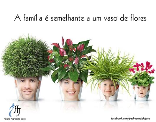 A família é semelhante a um vaso de flores.